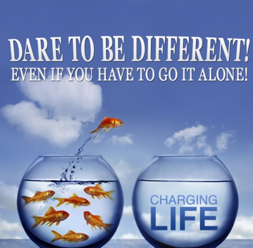 Comfort Zone Motivational Quotes Wallpaper Dare To Be Different Quotes Quotesgram
