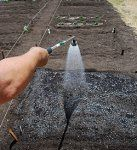How To Start An Organic Vegetable Garden About Com Home