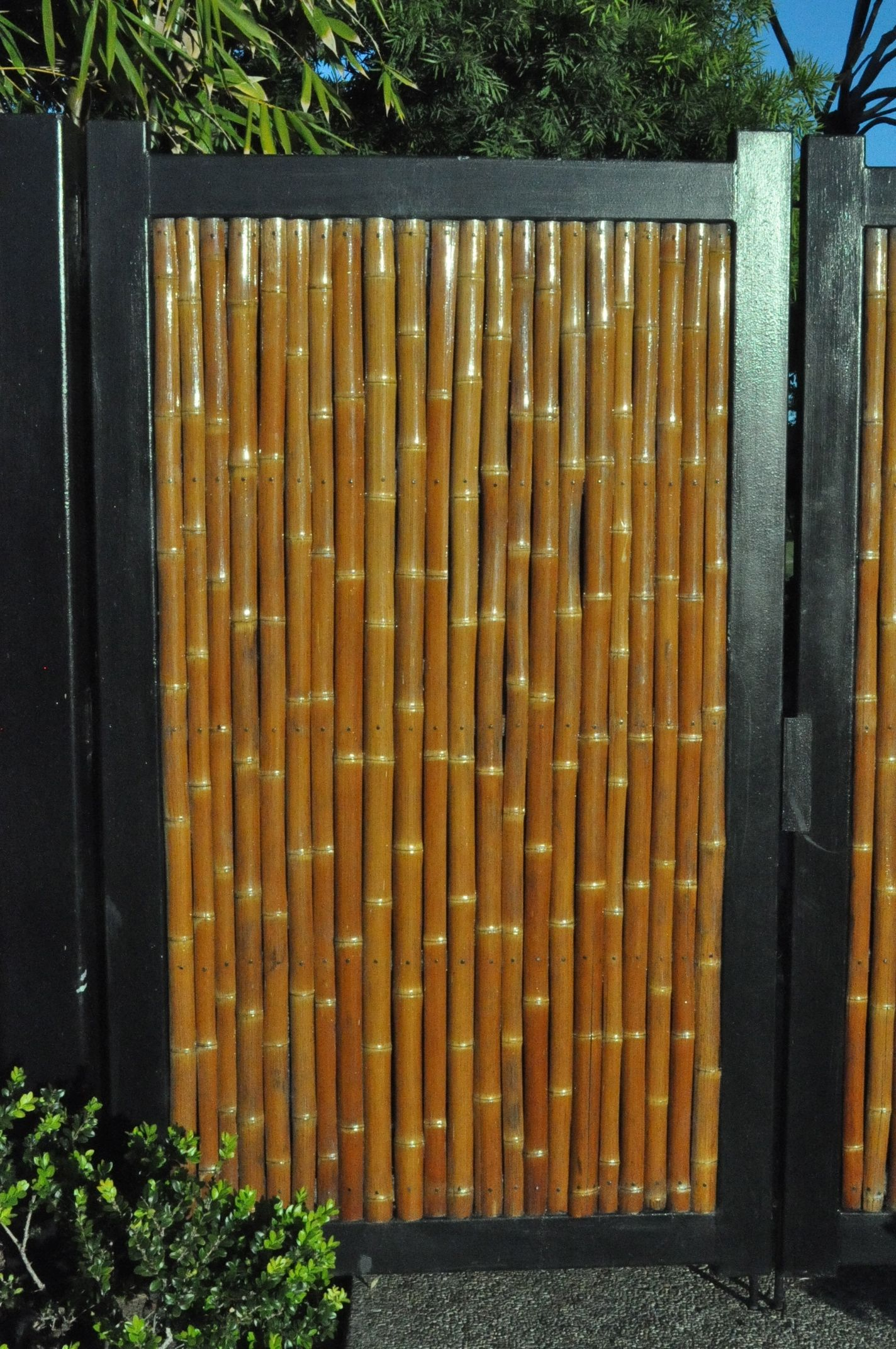 Bamboo Outdoor Shower Enclosures Bamboo Door Garden Diy Project And Etc Pinterest