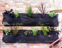 Hanging Bag Planters | Plants, Nature, Garden | Pinterest