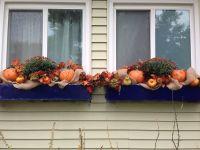 Fall window boxes | Festive decor / wreaths etc | Pinterest