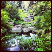 Pinterest Garden Ideas Rocks Photograph | Rock garden | Gard