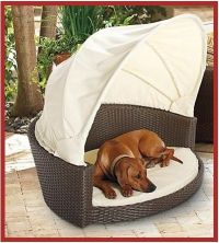 Canopies: Canopy Dog Bed