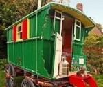Home Paulette Rees Denis Gypsy Caravan Dance Company