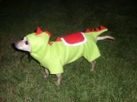Yoshi Nintendo Dog Costume Cosplay