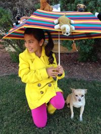 Raining cats and dogs costume   Alyna   Pinterest