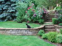 low retaining wall ideas | Outside Out | Pinterest