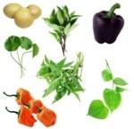 Start A Vegetable Garden Weekend Gardener The