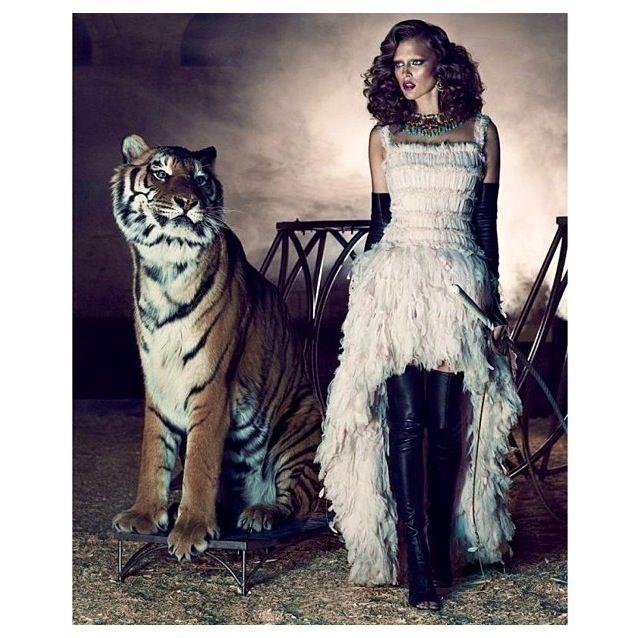 Woman Fashion Clothing