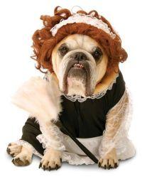 English Bulldog French Maid Dog Costume | Funny Dog ...