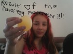 Of The Egg Experiment A Must Do For Summer Science Fair
