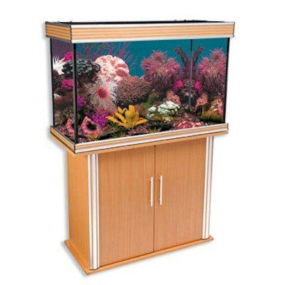 Nautilis II 58 Gallon Rectanglr Beech Aquarium and Stand Combo! Free
