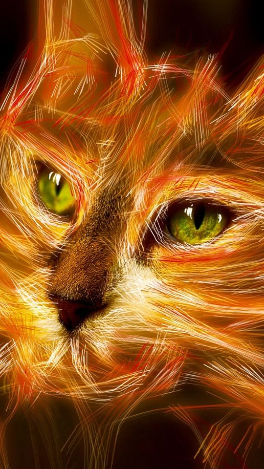 Inspirational Quote Wallpaper For Computer Warrior Cats Firestar Quotes Quotesgram