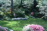A true southern garden!! | Landscaping Ideas | Pinterest