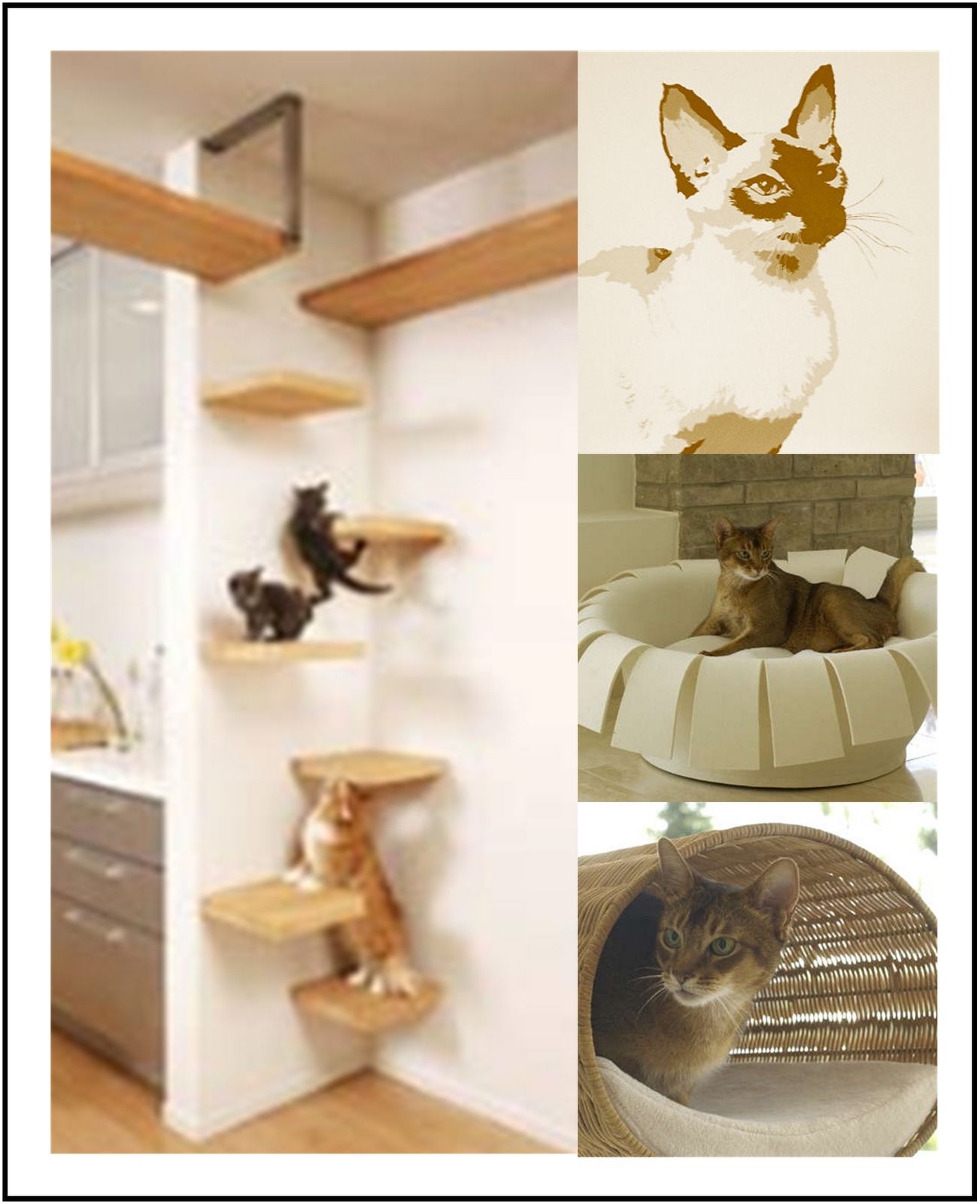 Cat Furniture Wall Cat Climbing Wall Apt 5b Pinterest