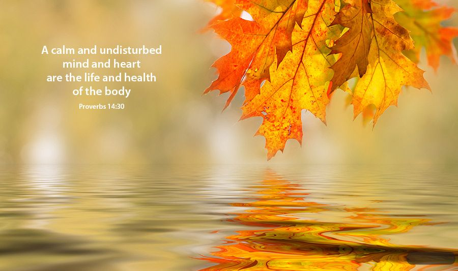 The Yellow Wallpaper Quotes About John Bible Quotes About Fall Quotesgram