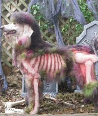 The gallery for --> Zombie Dog Halloween Costume