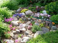 Beautiful Rock Garden | Garden | Pinterest
