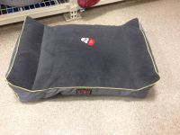 Kong dog bed for jeep | Dogs | Pinterest