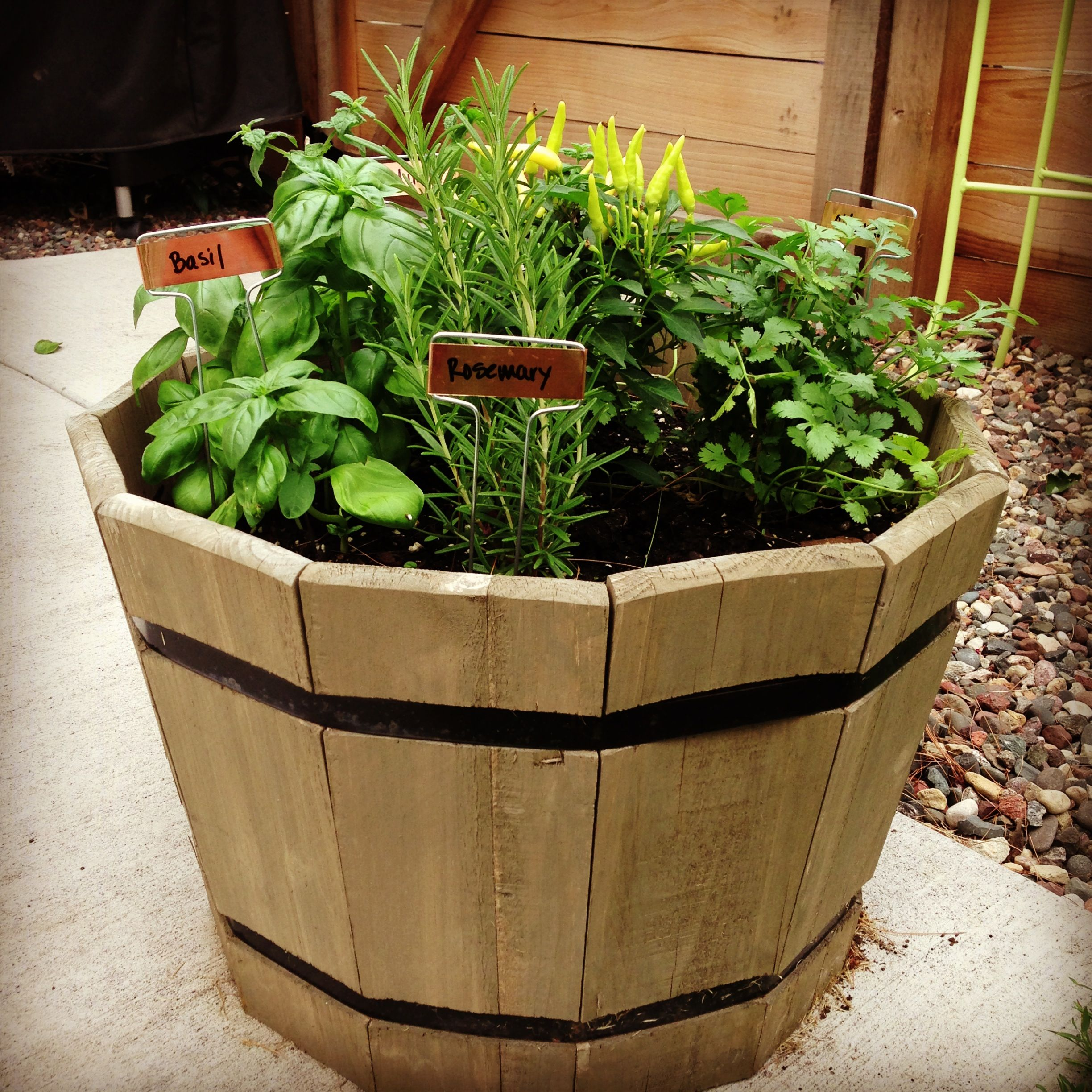 Herb Garden Container Container Herb Garden Stuff To Do Pinterest