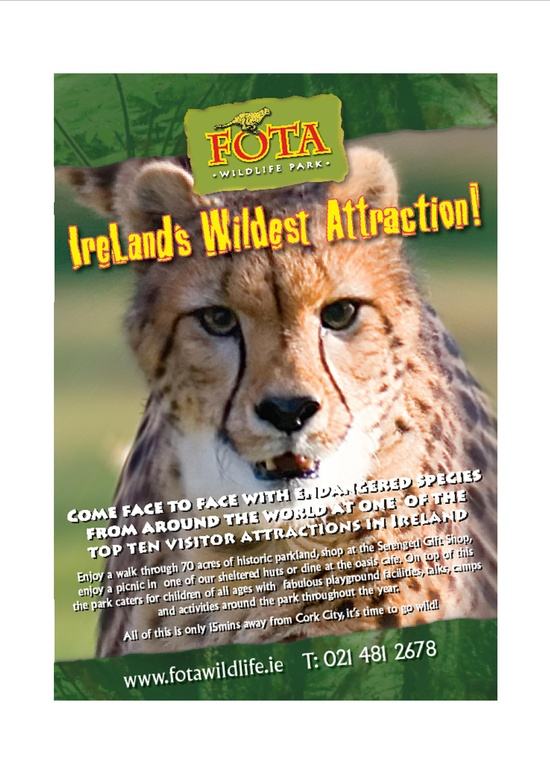 23 best Our Adverts images on Pinterest Wildlife park, Park and - sample receptionist resume