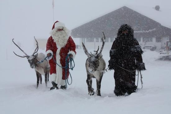 205 best Christmas in Lapland images on Pinterest Papa noel - witness letter template