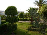 "Bild ""Hotelstrand"" zu Hotel Swiss Inn Resort Dahab in Dahab"