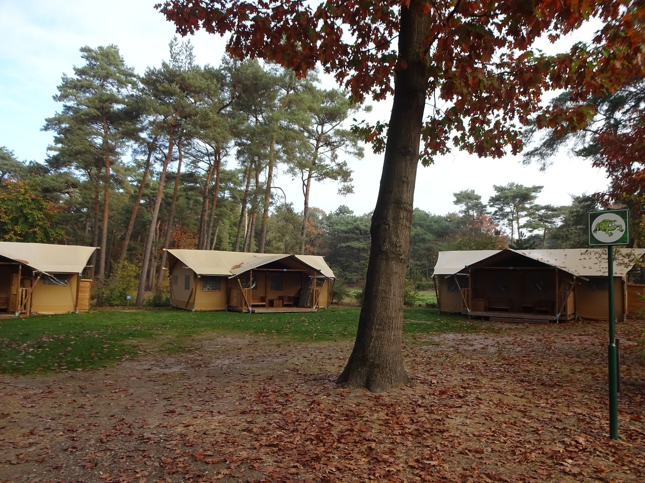 Roompot Mierlo Zwembad Roompot Vakanties Bospark T Wolfsven Updated 2019 Campground