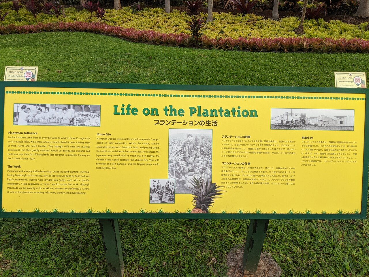 Dole Plantation Wahiawa 2021 What To Know Before You Go With Photos Tripadvisor