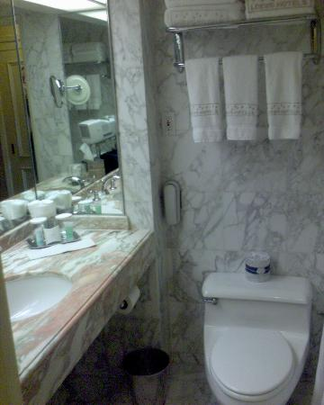 Marble Bathroom Small