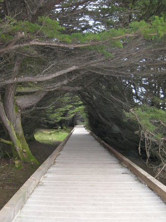 McKerrick Park, Fort Bragg - Review of MacKerricher State Park, Fort