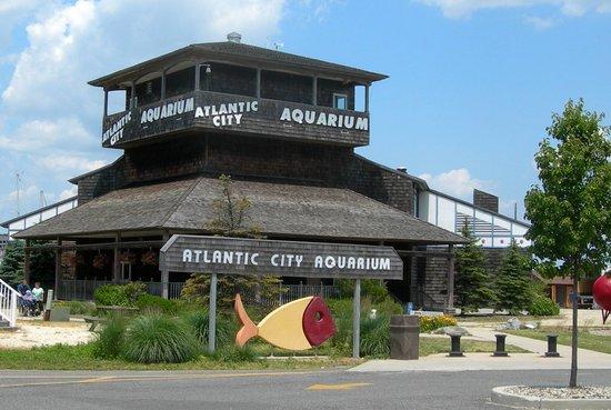 Atlantic City Aquarium Historic Gardner's Basin (NJ): Hours, Address