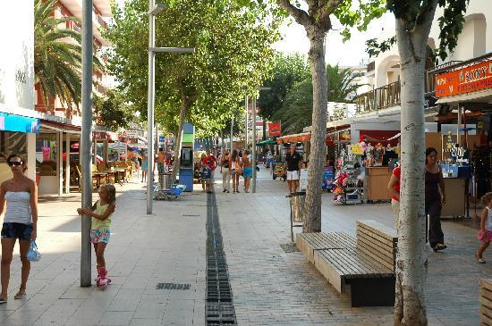 Manacor Shopping Center Getting Tropical At Cala Millor - Picture Of Hotel Sabina
