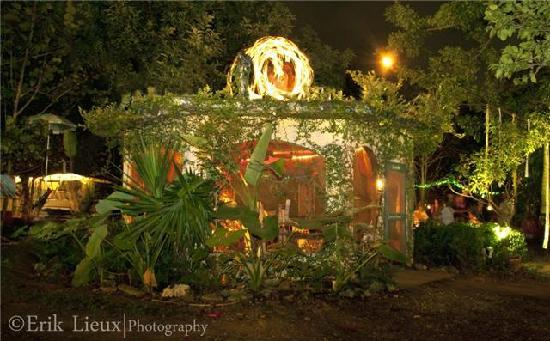 Gazebo in the garden at night - Picture of Everglades International