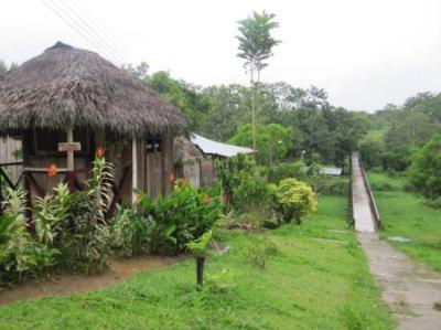 Leticia, Colombia - Picture of Tabatinga, State of Amazonas - TripAdvisor