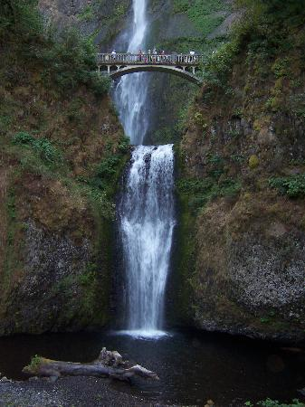 Multnomah Falls Oregon Wallpaper Multnomah Falls Oregon Picture Of Bridal Veil Oregon