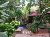 Lush foliage around the pool make you feel you are in your ...