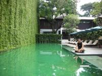 Pool with a vertical garden - Picture of 137 Pillars House ...