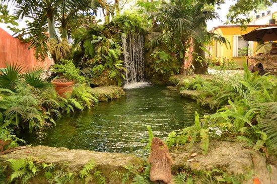 Waterfall - Picture of Everglades International Hostel, Florida