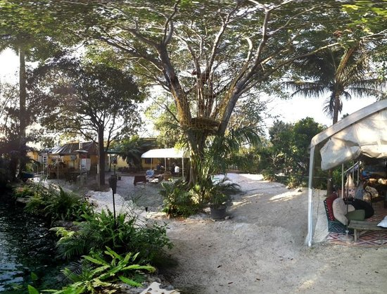 Our improved Tree House - Picture of Everglades International Hostel