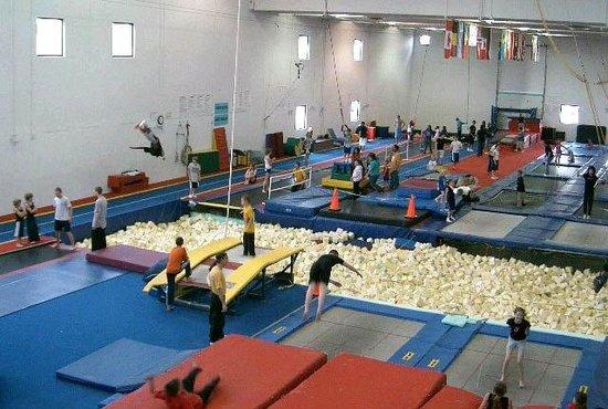 Trampoline World Gymnastics (Colorado Springs) - 2018 All You Need