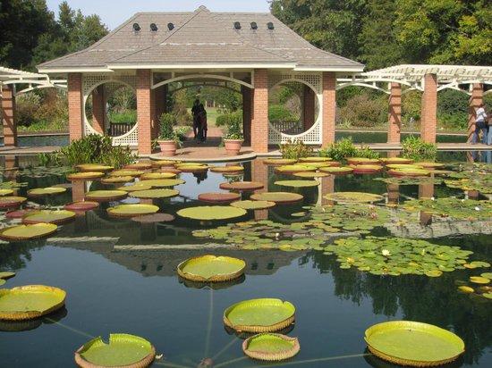 30 Lastest Outdoor Fountains Huntsville Al Pixelmaricom
