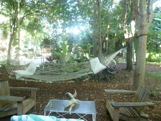 Hamac - Picture of Everglades International Hostel, Florida City