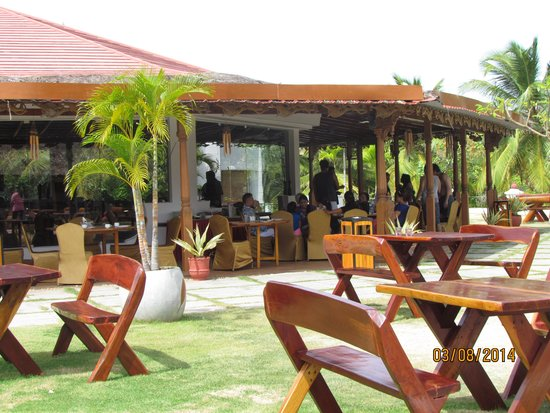 Garden outside the Restaurant  Bar - Picture of Chariot Beach