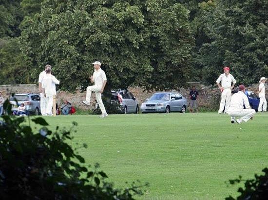 playing cricket - Picture of Chippenham Park, Chippenham - TripAdvisor