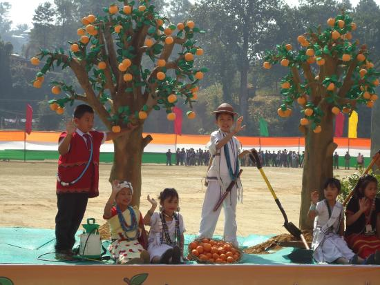 Tableaux depicting horticulture wealth of the state - Picture of