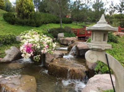 LABERINTO - Picture of Jardines de Mexico, Jojutla - TripAdvisor