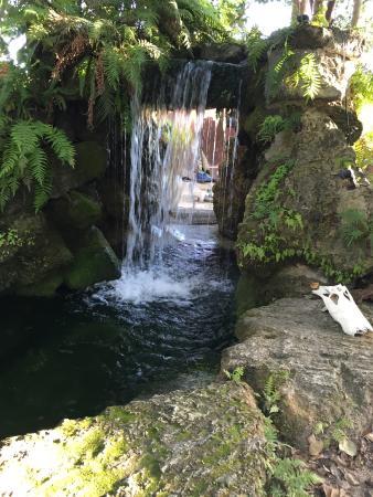 waterfalls - Picture of Everglades International Hostel, Florida