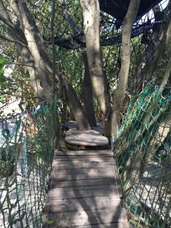 Everglades International Hostel cvfreepro