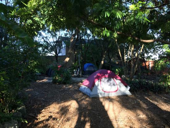 camping - Picture of Everglades International Hostel, Florida City